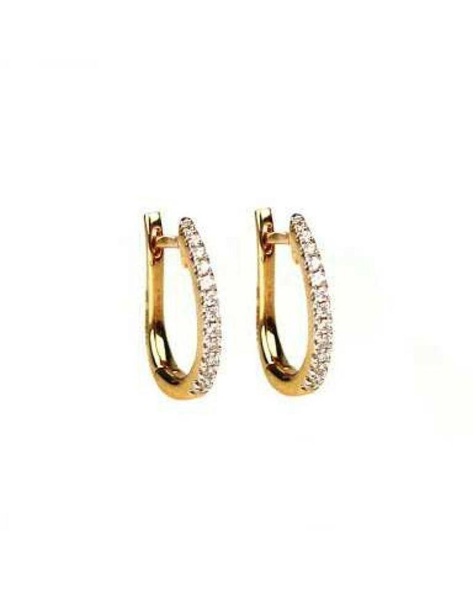 Jewellery Hut 1k Gold Plated Zircon D Earrings Fashioniel